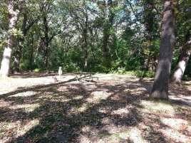 McIntosh Woods State Park in Ventura Iowa Shaded Site