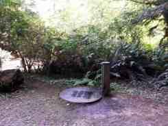 mill-creek-campground-redwoods-12