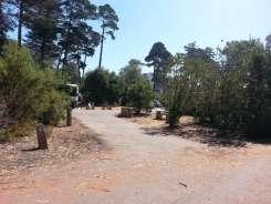 morro-bay-state-park-10