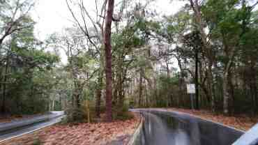 myrtle-beach-state-park-campground-myrtle-beach-sc-02