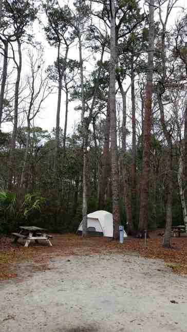 myrtle-beach-state-park-campground-myrtle-beach-sc-05