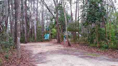 myrtle-beach-state-park-campground-myrtle-beach-sc-11