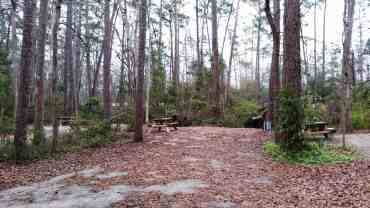 myrtle-beach-state-park-campground-myrtle-beach-sc-16