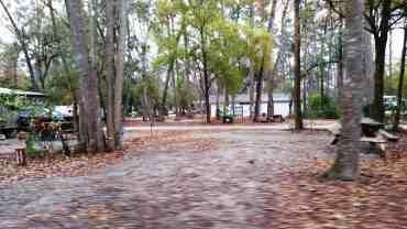 myrtle-beach-state-park-campground-myrtle-beach-sc-19