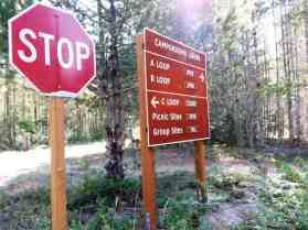 newhalem-creek-campground-north-cascade-national-park-01
