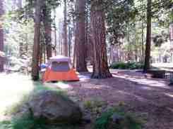 north-pines-campground-yosemite-national-park-12