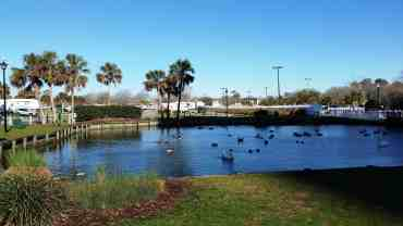 ocean-lakes-family-campground-myrtle-beach-sc-41