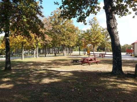 Ozarks Mountain Springs R.V. Park & Cabins near Mountain View Missouri Tent Sites
