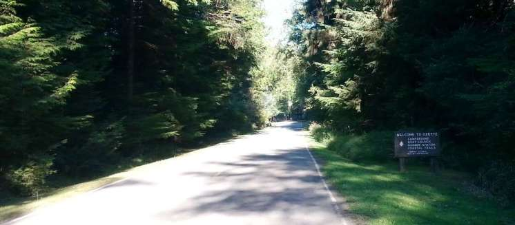 ozette-campground-olympic-national-park-01