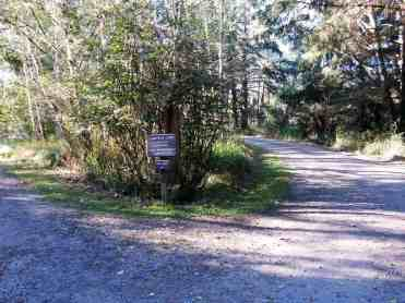 ozette-campground-olympic-national-park-04
