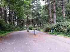 patricks-point-state-park-campground-trinidad-16