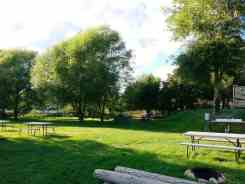 pine-near-rv-park-winthrop-wa-11