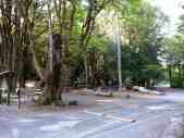 potlatch-state-park-campground-wa-3