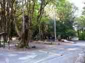 potlatch-state-park-campground-wa-3