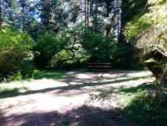 queets-campground-olympic-national-park-08