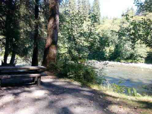 queets-campground-olympic-national-park-10