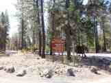 riverside-state-park-bowl-pitcher-campground-03