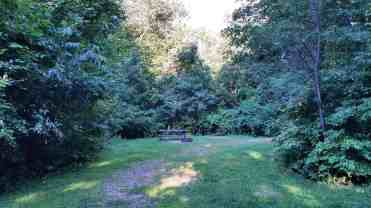 rocky-arbor-state-park-campground-wisconsin-dells-09