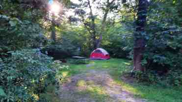 rocky-arbor-state-park-campground-wisconsin-dells-10