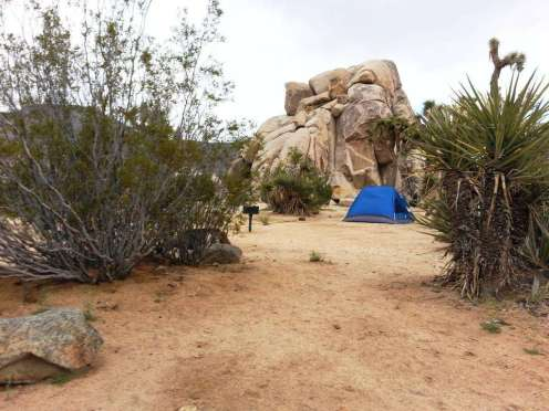 ryan-campground-joshua-tree-national-park-6