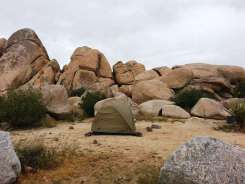 ryan-campground-joshua-tree-national-park-7