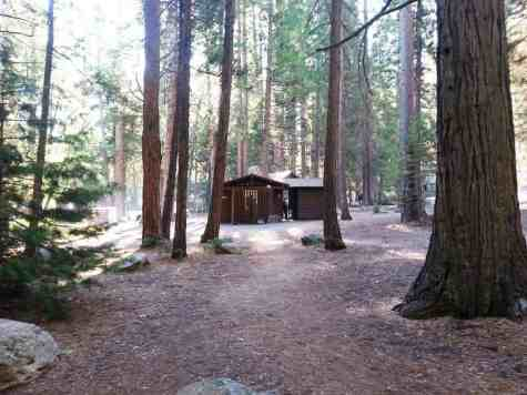 sentinel-campground-sequoia-kings-canyon-national-park-07