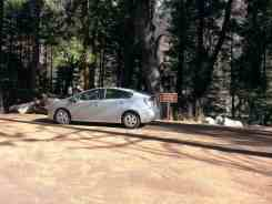 sentinel-campground-sequoia-kings-canyon-national-park-10
