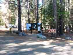 sentinel-campground-sequoia-kings-canyon-national-park-14