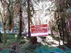 sol-duc-campground-olympic-national-park-2