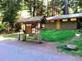 sol-duc-campground-olympic-national-park-4