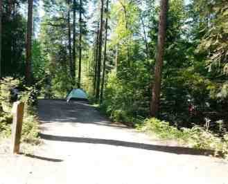 springy-point-campground-sandpoint-id-03