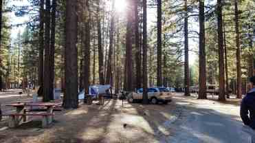 tahoe-valley-campground-pictures-08
