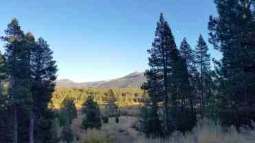 tahoe-valley-campground-pictures-16