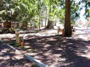 the-log-cabin-campground-olympic-national-park-15