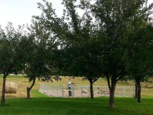 Timberline Campground in Waukee Iowa Dog Park
