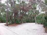 Tomoka State Park Campground in Ormond Beach Florida Spacing