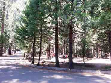 upper-pines-campground-yosemite-national-park-06