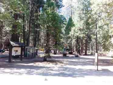 upper-pines-campground-yosemite-national-park-09