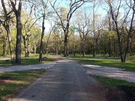 Walnut Woods State Park in West Des Moines Iowa Roadway