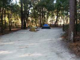 Wekiwa Springs State Park Campground in Apopka Florida Tent Site