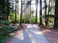 wenberg-county-park-campground-stanwood-wa-11