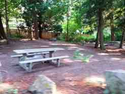 wenberg-county-park-campground-stanwood-wa-12