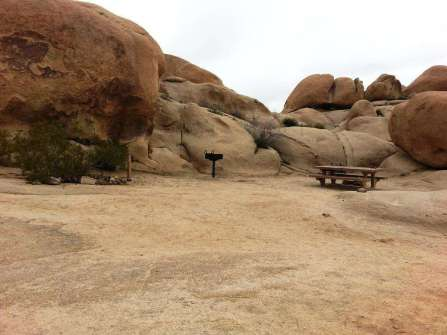 white-tank-campground-joshua-tree-national-park-11