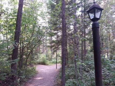 whitefish-kalispell-north-koa-whitefish-montana-walkway