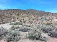 wildrose-campground-death-valley-4