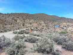 wildrose-campground-death-valley-5