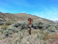 wildrose-campground-death-valley-6
