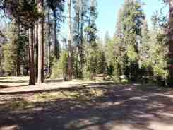 yosemite-creek-campground-yosemite-national-park-ca-07