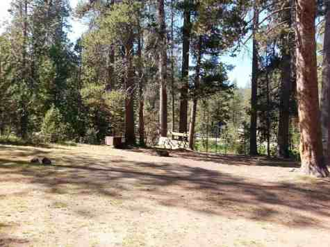 yosemite-creek-campground-yosemite-national-park-ca-08