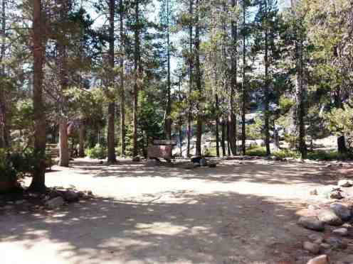 yosemite-creek-campground-yosemite-national-park-ca-16